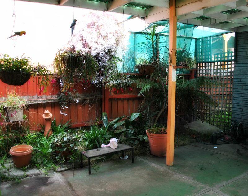 Garden.3